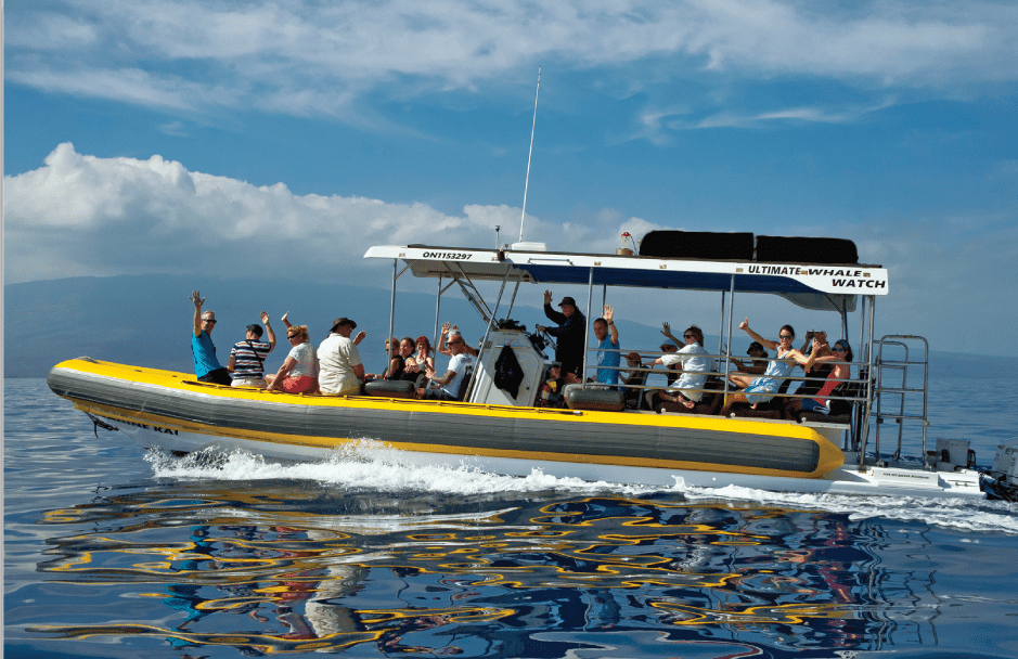 wahine kai tour boat for whale watching and snorkeling