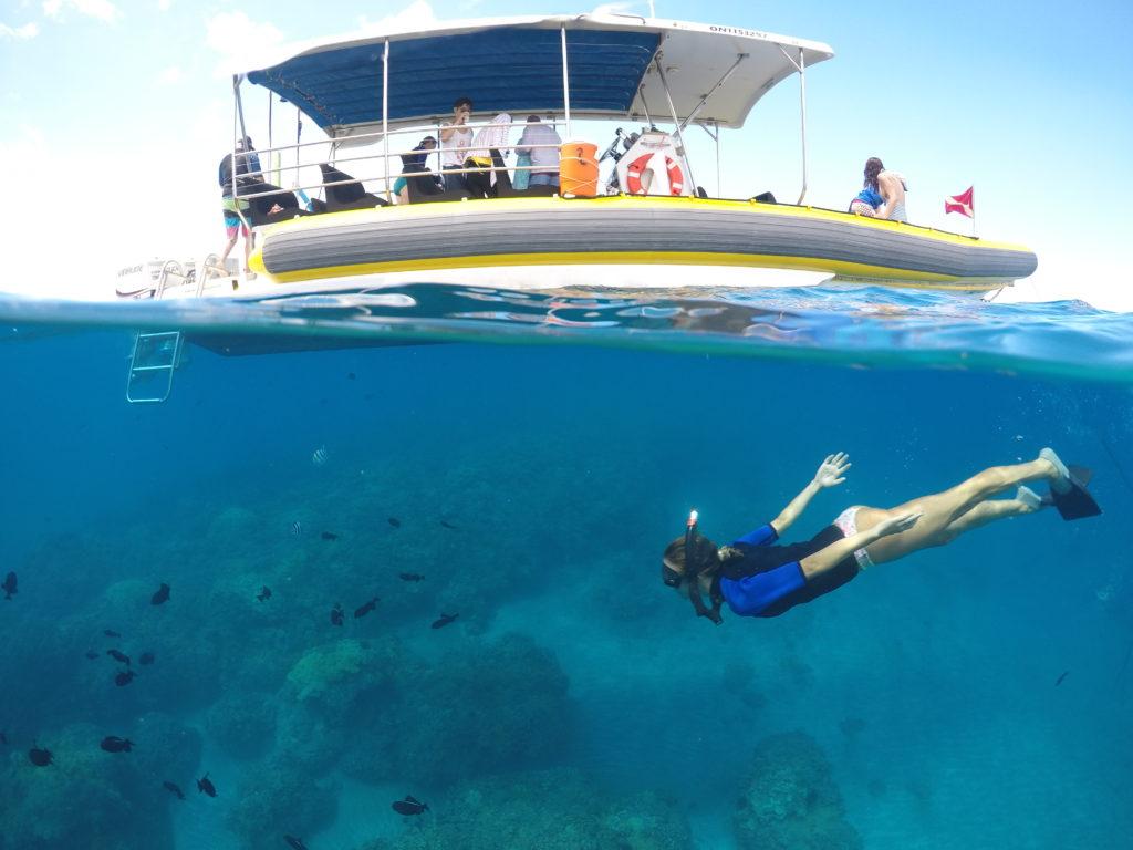 Wahine Kai private snorkel boat tour